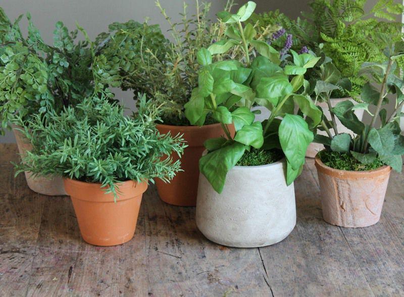 10cm artificial basil herb pot collection