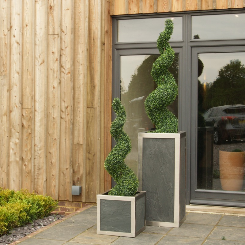 150cm Boxwood Spiral in 100cm Cafe and 120cm Spiral in 40cm Cafe cube