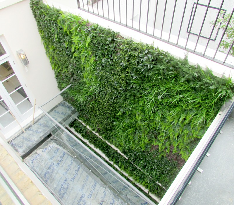 25 sq metres Large artificial Green wall in London light well