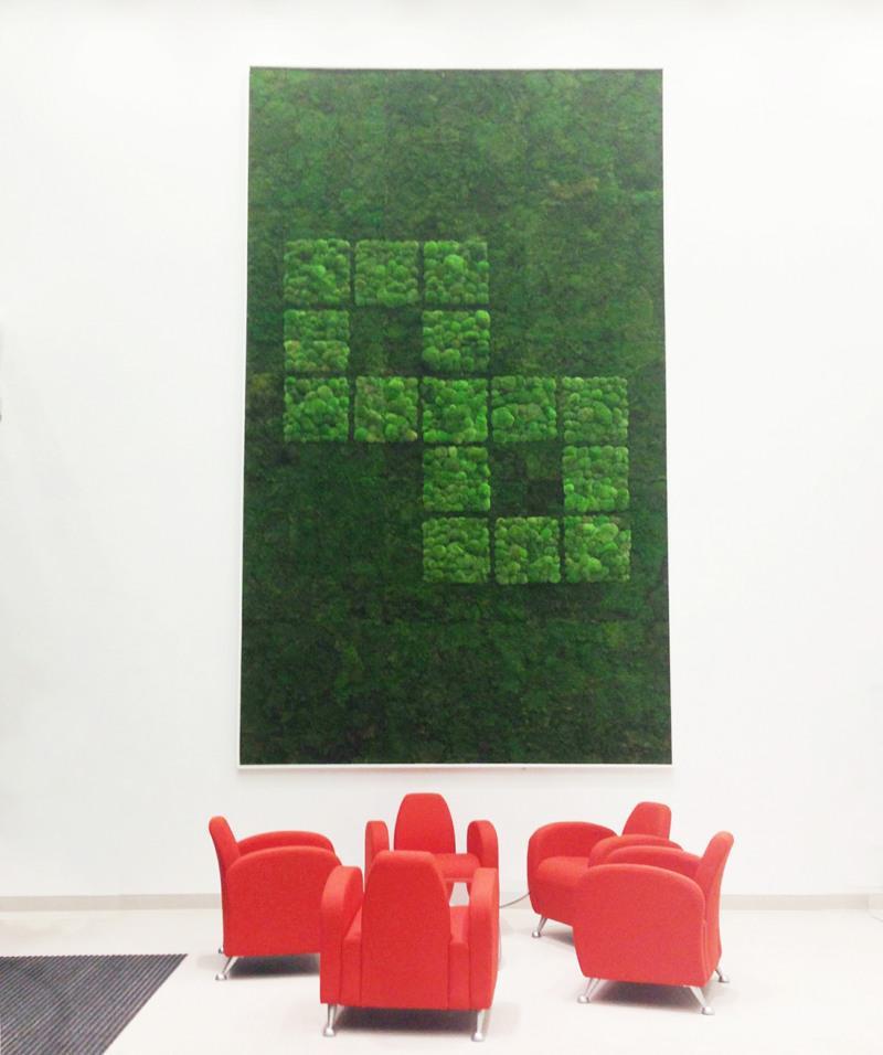 5 metre tall Flat moss and Bun moss wall