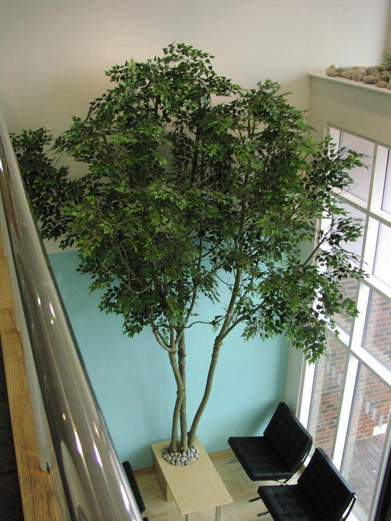 5m large artificial Birch tree