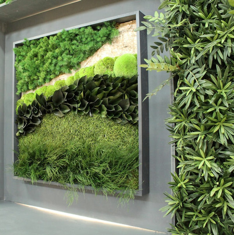 70x70cm Preserved plant and moss wall picture
