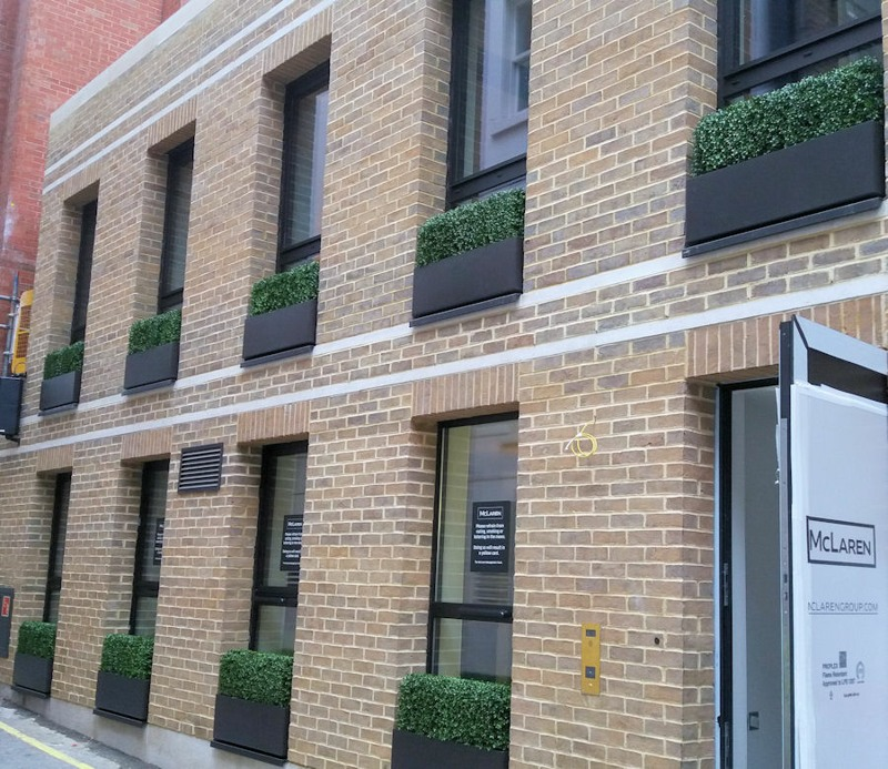 A South Audley street 1 hedges