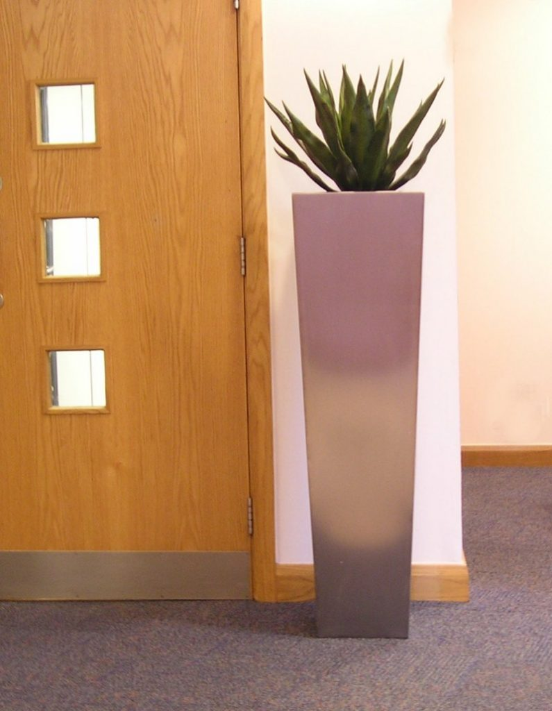 Agave in stainless steel tall planter