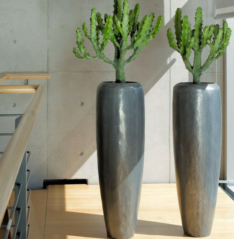 Aluminium Loft with live cactus