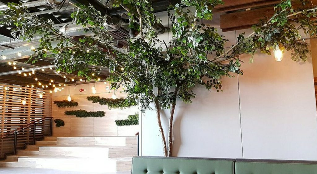 Artificial Birch tree with ash stems and flat canopy extending across ceiling