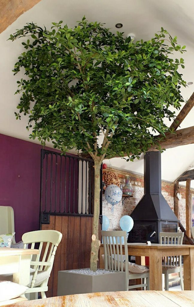 Artificial Black Olive Tree with a Single Stem