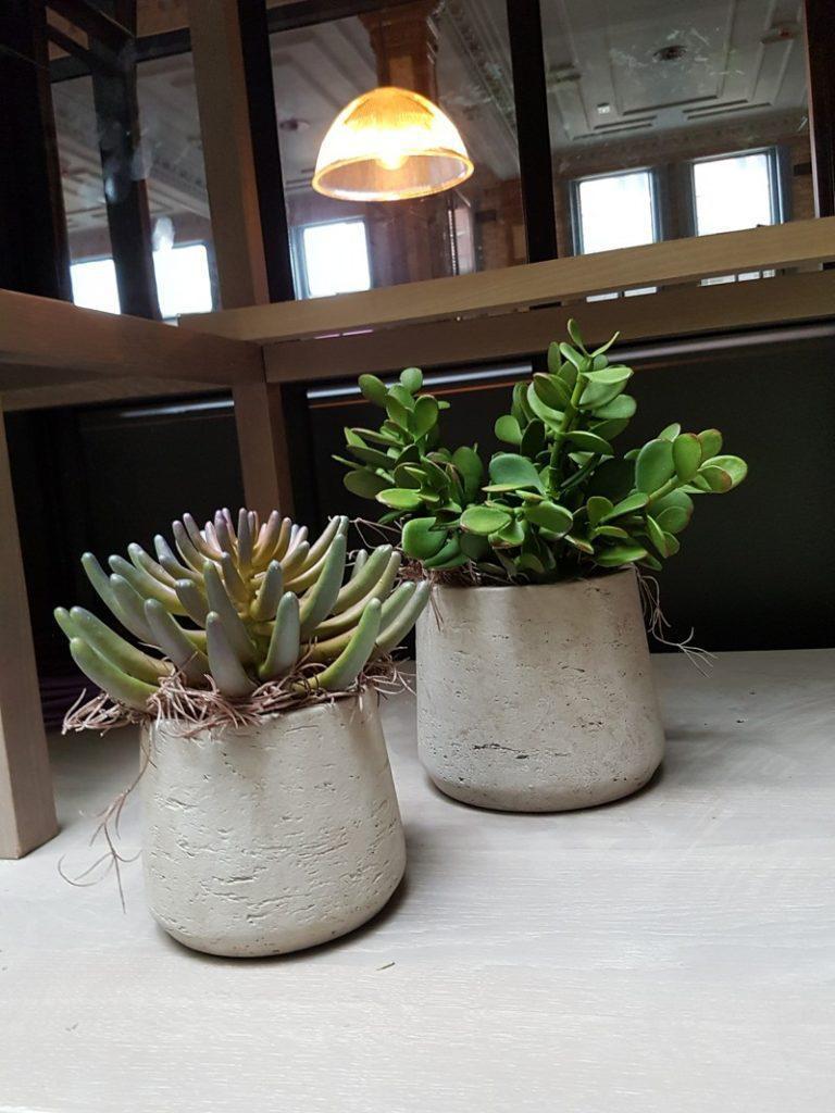 Artificial Crassula and Sedum in concrete plant pot