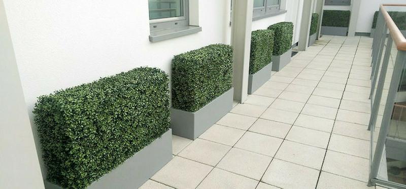 Artificial Hedge in Trough