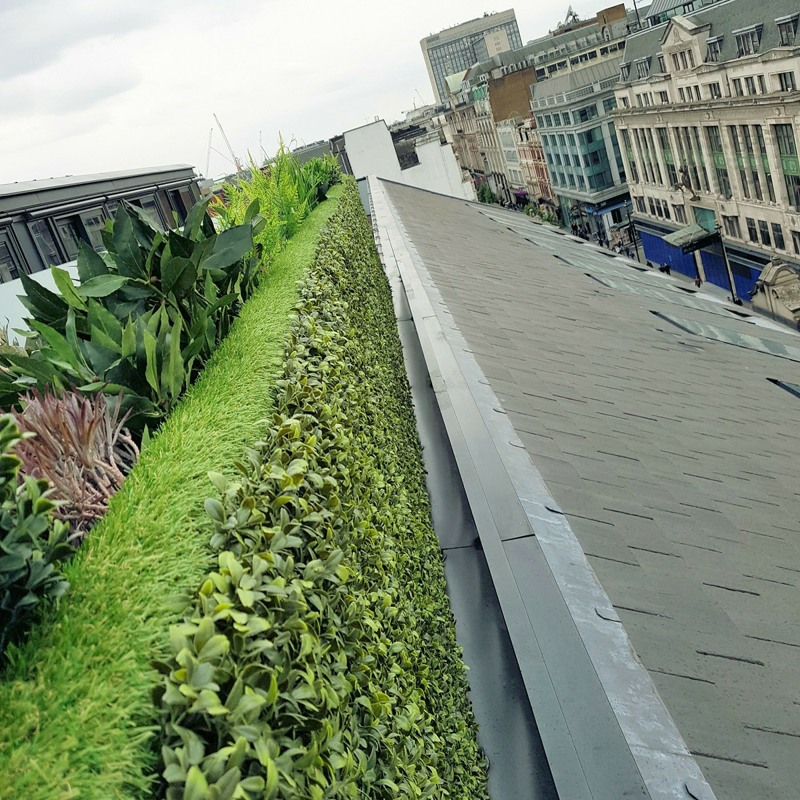 Artificial Hedge with Green Wall Backing