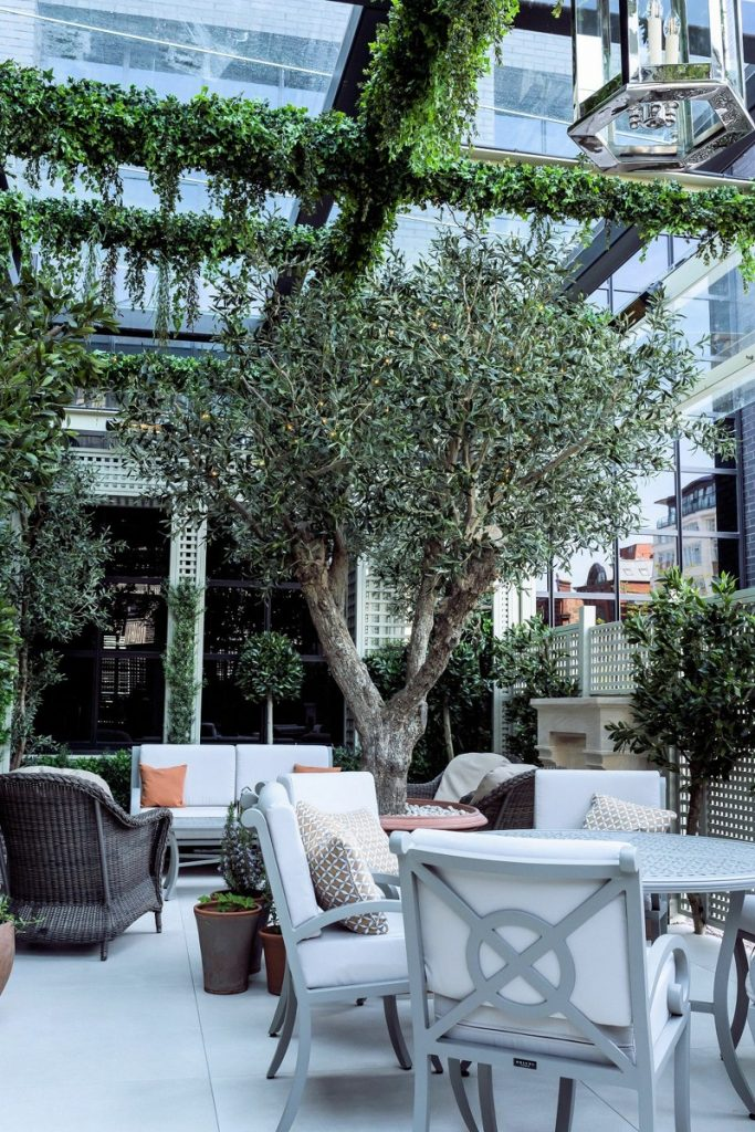 Artificial Olive Tree for covered terrace