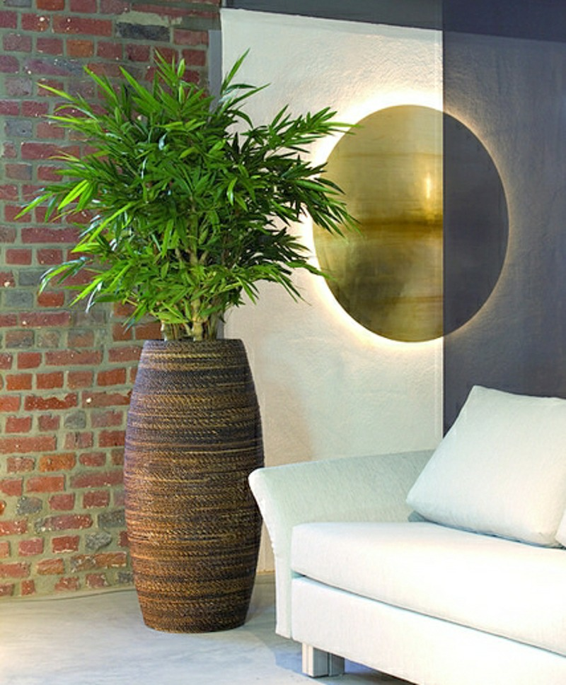 Artificial Rhapis palm in natural planter