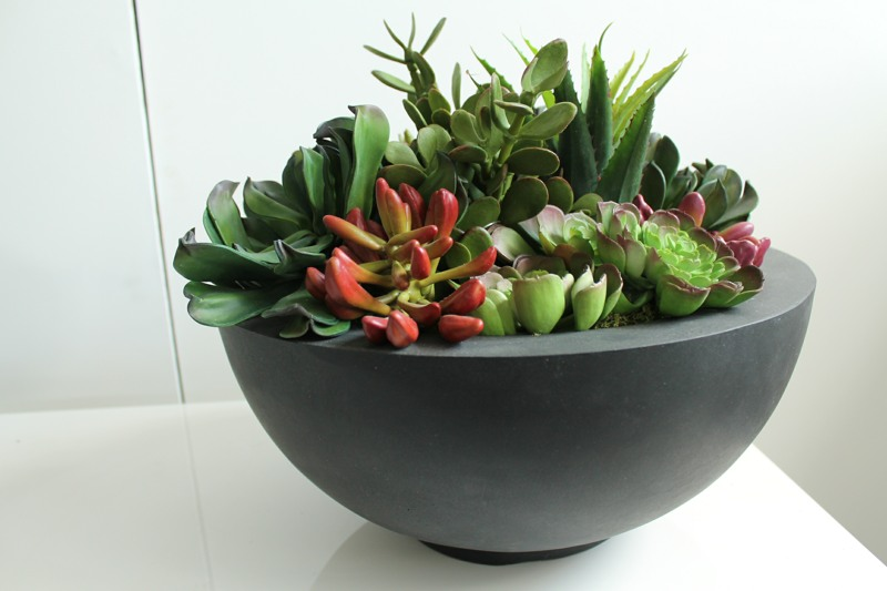 Artificial Succulents in a bowl