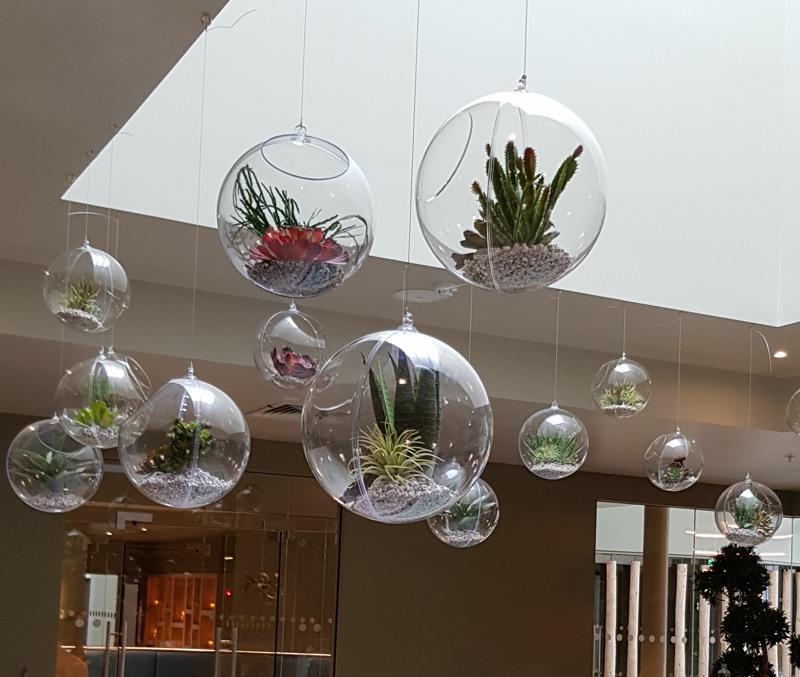 Artificial Succulents in hanging Globe Terrariums
