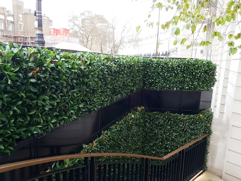Artificial bay hedging installed in London