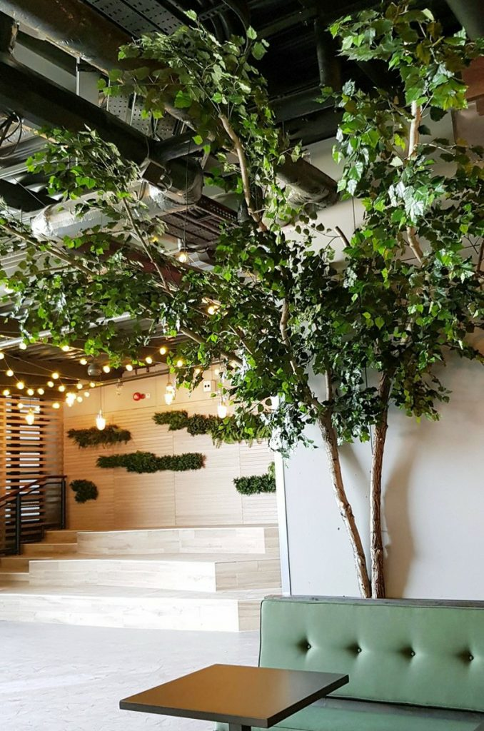 Artificial birch tree with ceiling canopy