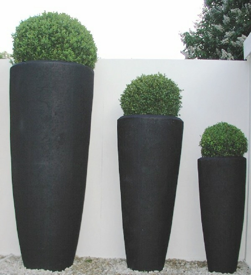 Artificial buxus balls in planters at RHS Chelsea Flower Show