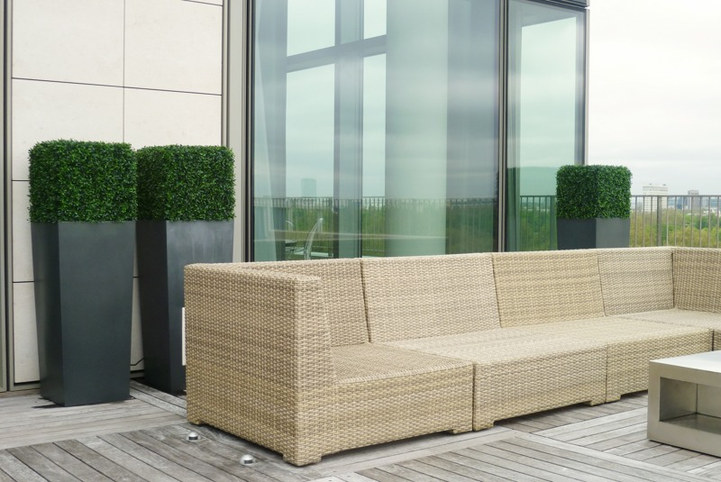 Artificial buxus cubes in planters exterior