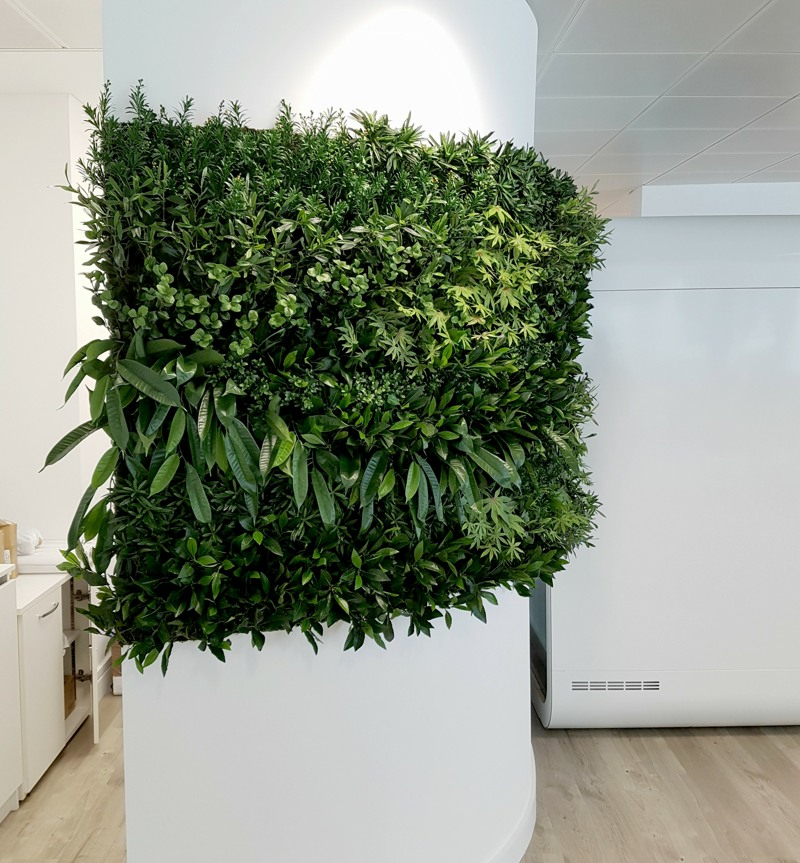 Artificial curved plant wall