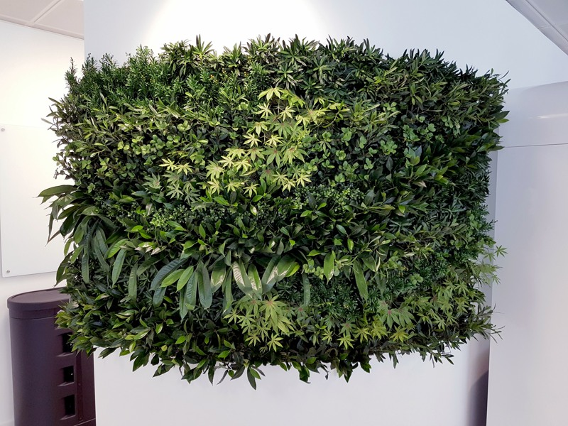 Artificial curved wall of plants