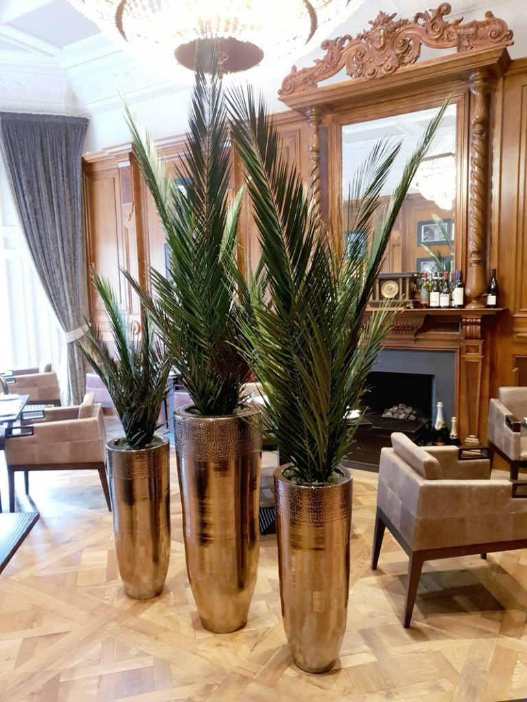 Artificial floor standing Preserved palms in pots