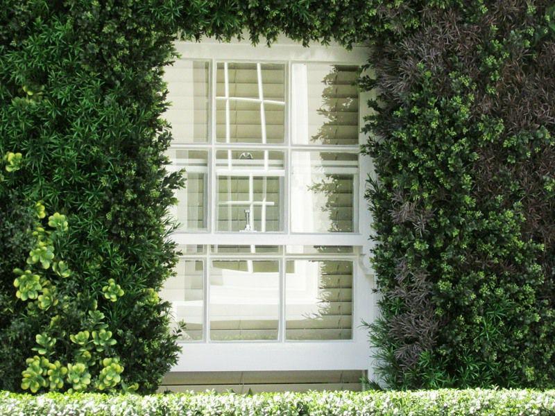 Artificial green wall surrounding window