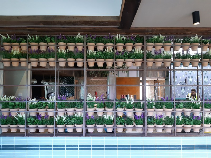 Artificial lavender in terracotta pots