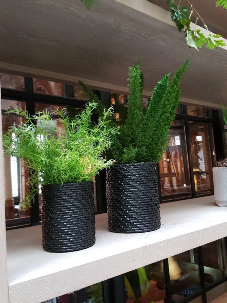 Artificial plants in wicker pots