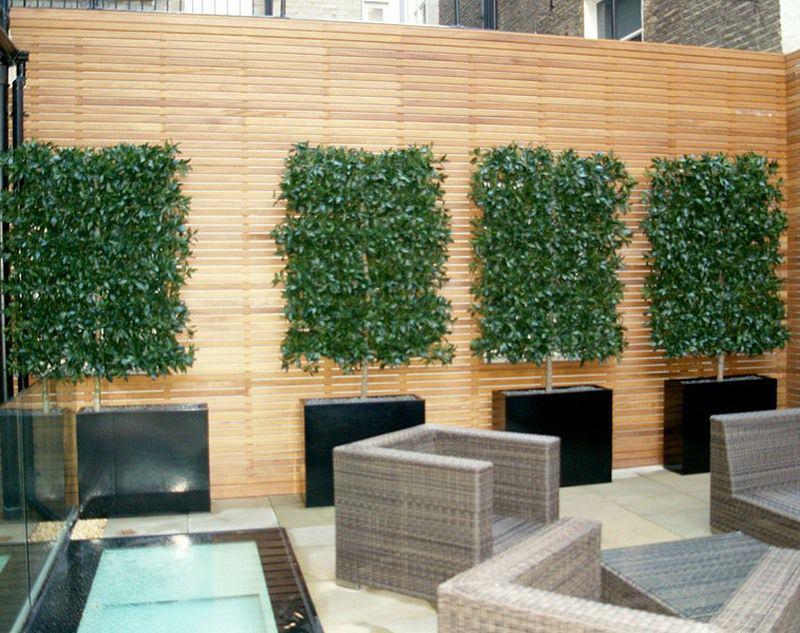 Bespoke artificial bay espalier trees