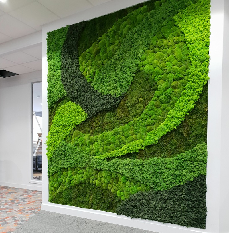 Bespoke moss art using variety of mosses 1