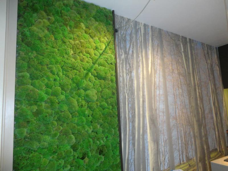 Bun Moss wall panel with Birch wall mural
