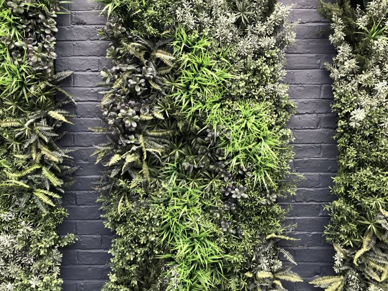 Close up artificial green wall Town and Gown pub