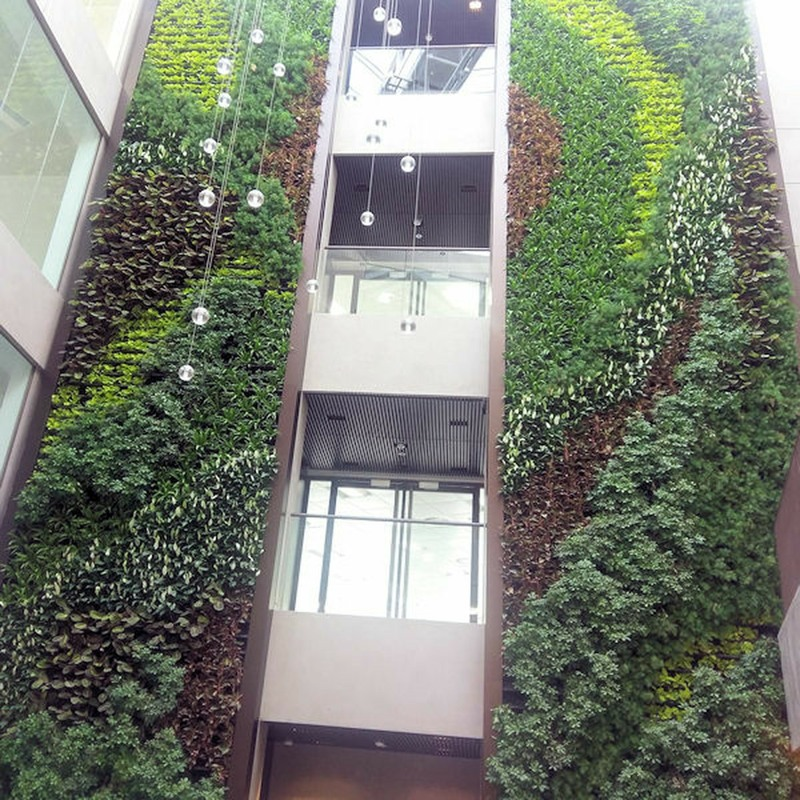 Completed Living Wall 13 metres tall