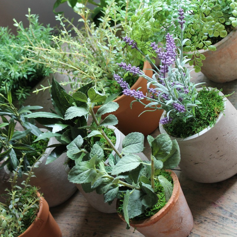 Eclectic mix of artificial lavender and herbs in 10 cm pots