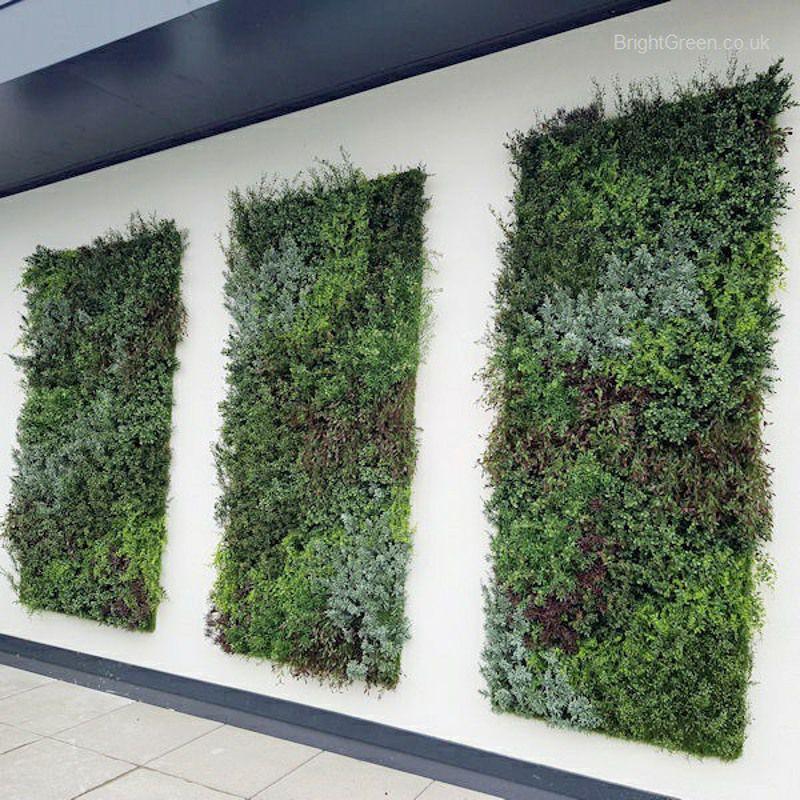 Exterior Artificial Plant Walls Panels Set of 3 Sized