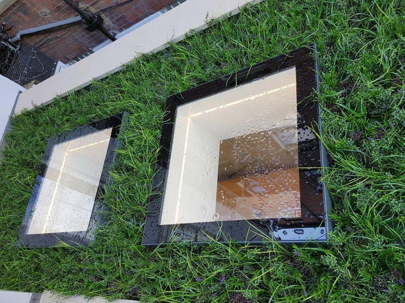 Exterior Green roof around skylights
