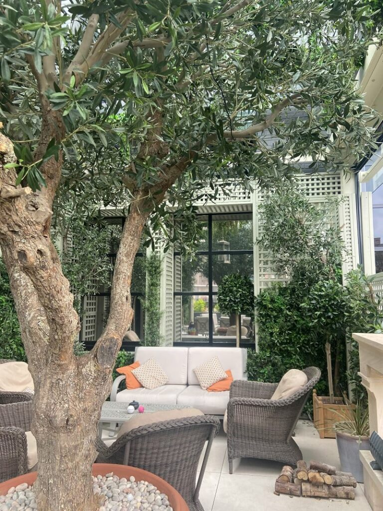 Faux Olive tree on real Olive trunk at Dakota Hotel Manchester