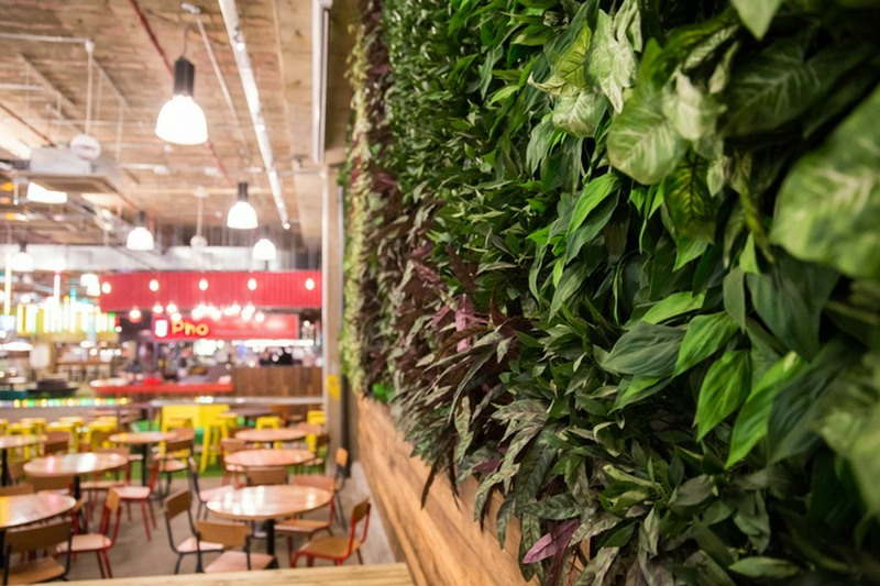 Fire rated green wall for Trinity Kitchen leeds