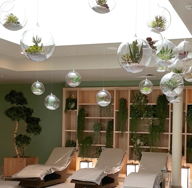 Hanging Globe Terrairiums with Artificial Succulents center p ireland