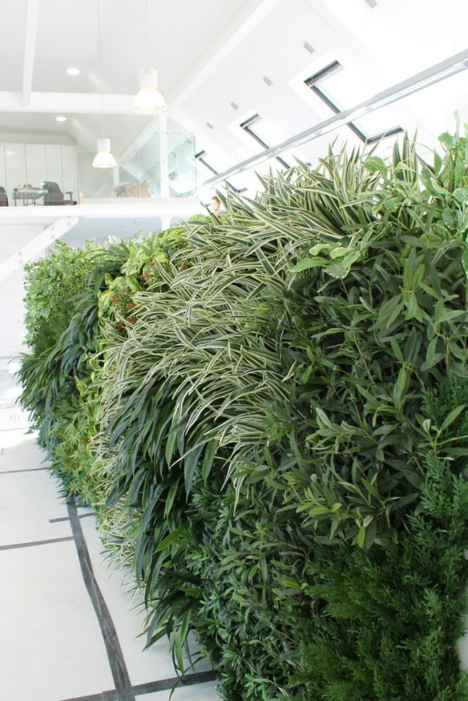 Lush green wall in office