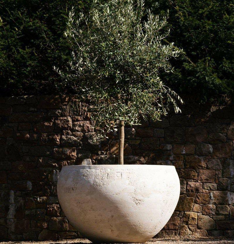 Medea giant planter