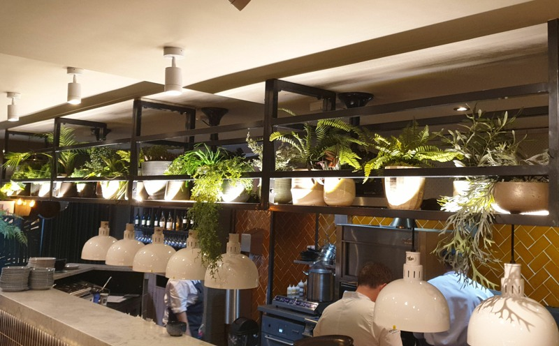 Mixture of artificial plants on shelves for restaurants