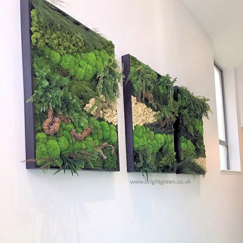Moss Art 3 panels