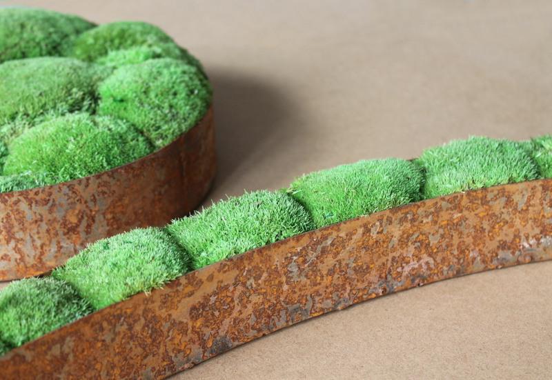 Moss art frames