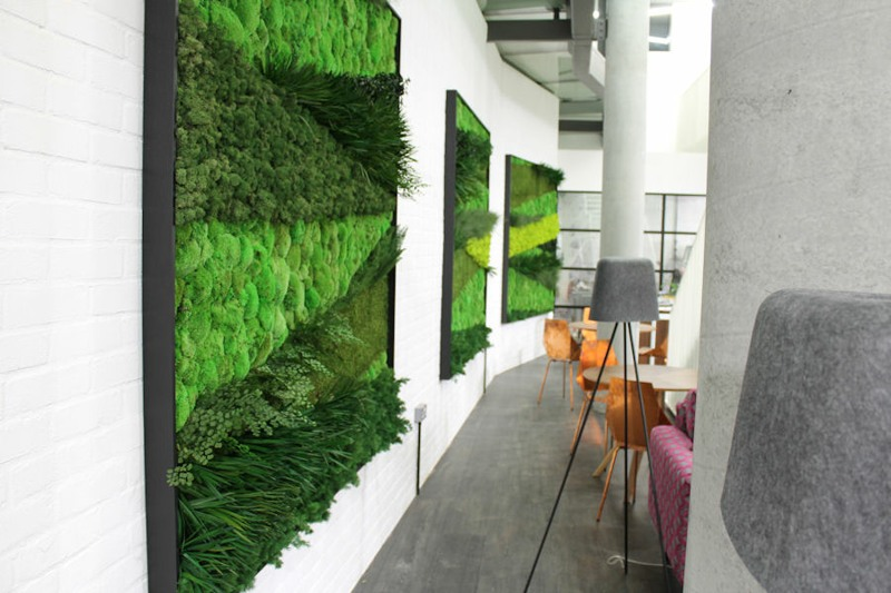 Moss art wall panels by Bright Green