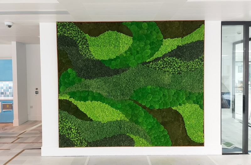 Moss feature wall mixed 1