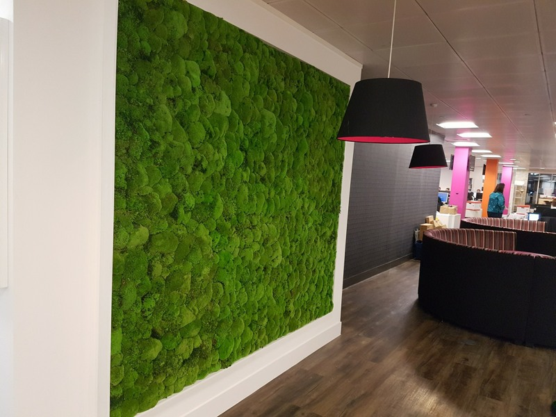 Moss wall in bar