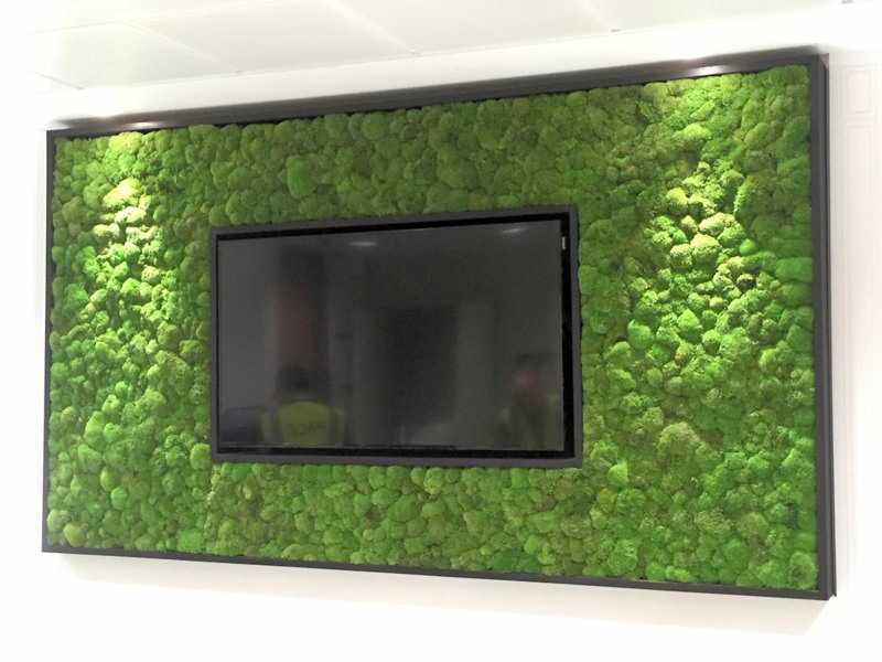 Moss wall with TV
