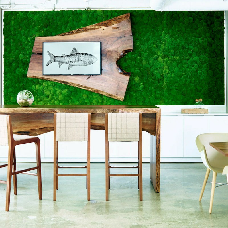 Moss wall with fish square