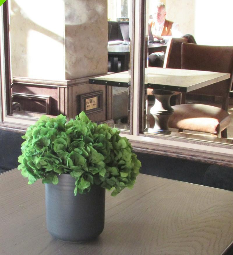 Preserved Hydrangea in a small simple ceramic pot
